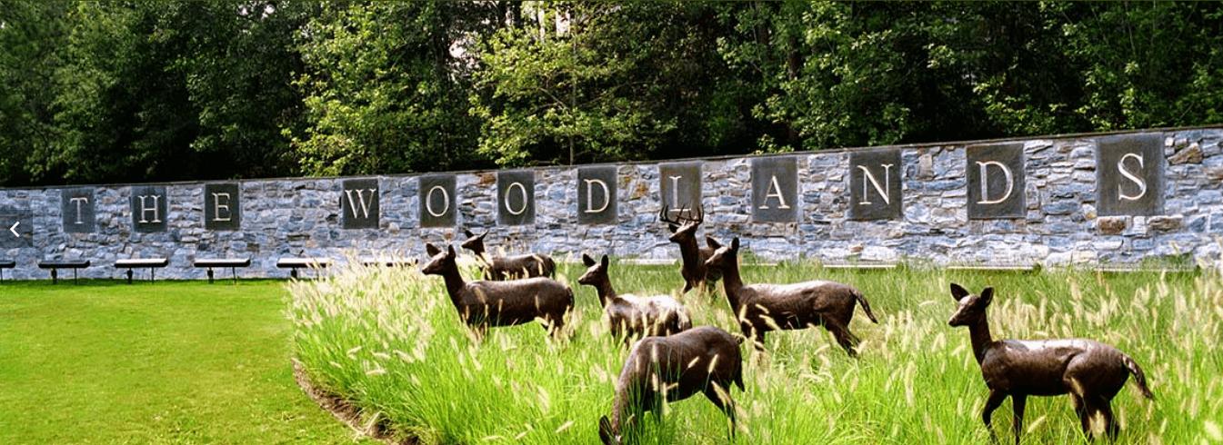 The Woodlands es unas de las áreas más exclusivas de la zona metropolitana de Houston, Texas. (thewoodlands.com)
