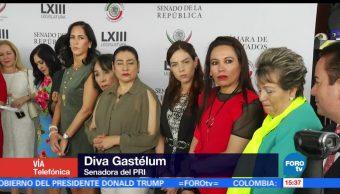 noticias, forotv, Diva Gastélum, pide que se retire, candidatura, Guillermo Anaya