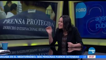 Cristina Ruelas, Artículo 19, violencia, periodistas en México