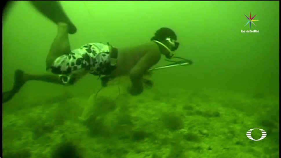 Inicia, temporada, pesca, Pepino de Mar, Yucatán, pesca redituable