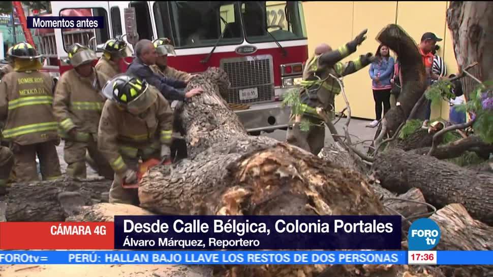 vientos, Ciudad de México, calle Bélgica, colonia Portales