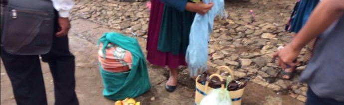 municipios indígenas, Chiapas, tradición, hongos silvestres, Usos y costumbres