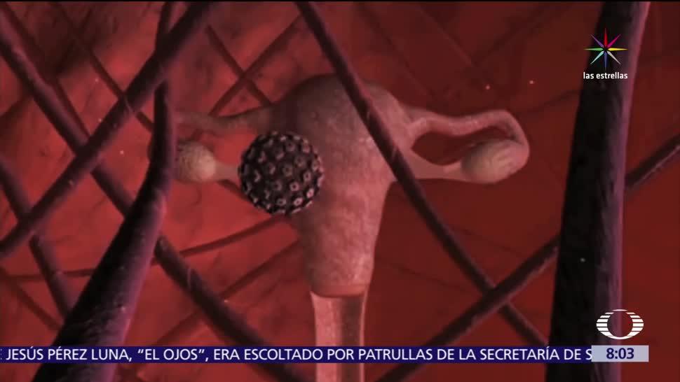riesgos, contraer VPH, Virus, Papiloma Humano
