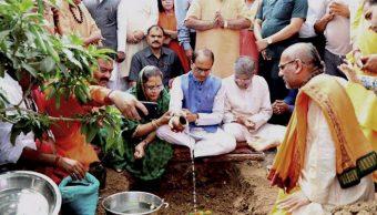 66 millones, plantaron, árboles, India, reforestación, plantación