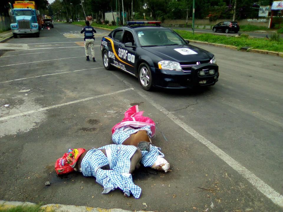 Perros Muertos Pitbull Coyoacan Menor Ataque Animales