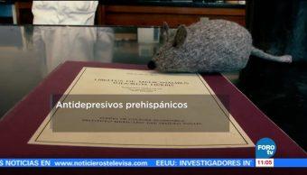 Antidepresivos Utilizaban Habitantes Prehispanicos Científicos Mexicanos
