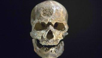 Evolución, Origen, Ser Humano, Homo sapiens, neandertal, evolución del ser humano