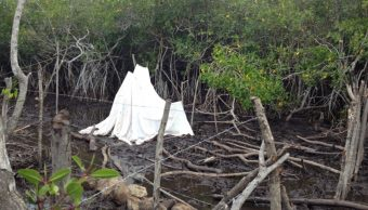 Interpone Profepa 12 denuncias penales ante PGR por relleno de humedales en Nayarit