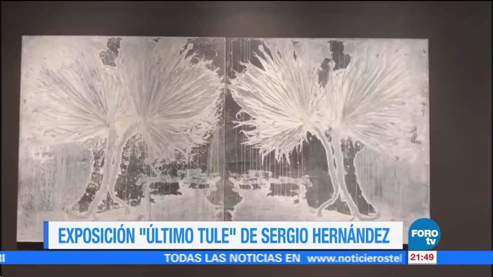 Exposición 'Último Tule' de Sergio Hernández