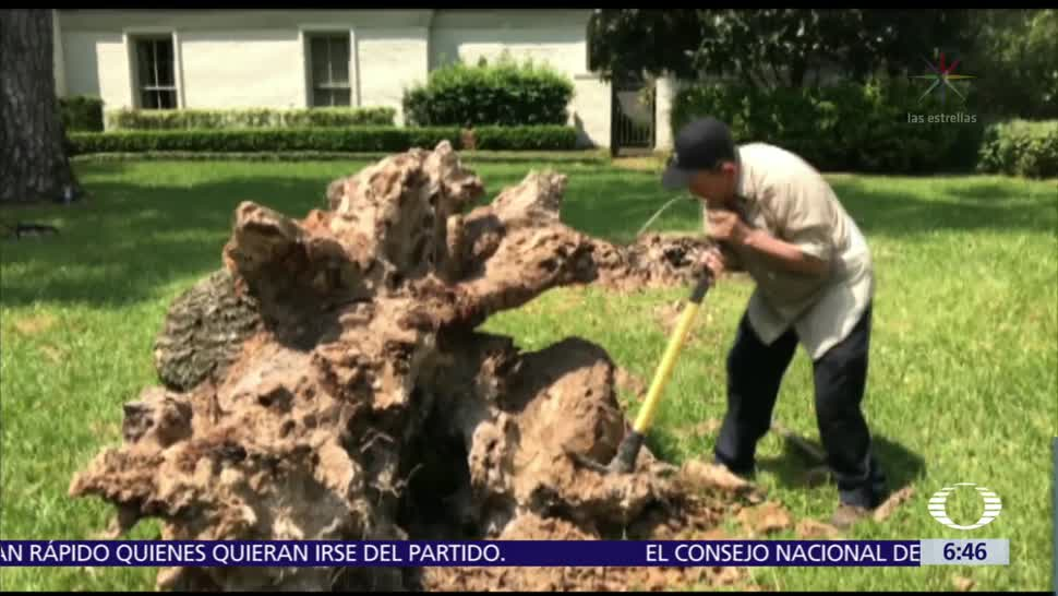 Mexicanos, apoyarán, reconstrucción, Texas