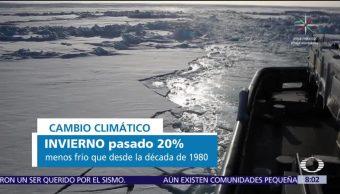 Altas temperaturas ponen en peligro al Polo Norte