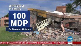 Destinarán 100 millones de pesos a PyMes afectadas de Oaxaca y Chiapas