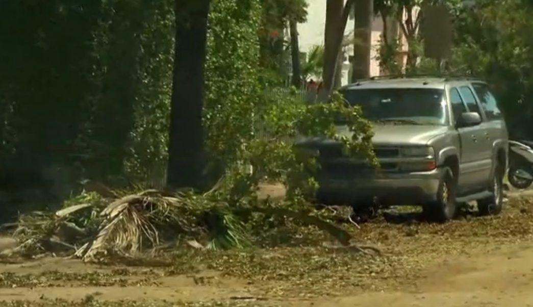 familias de miami beach logra regresar a sus casas