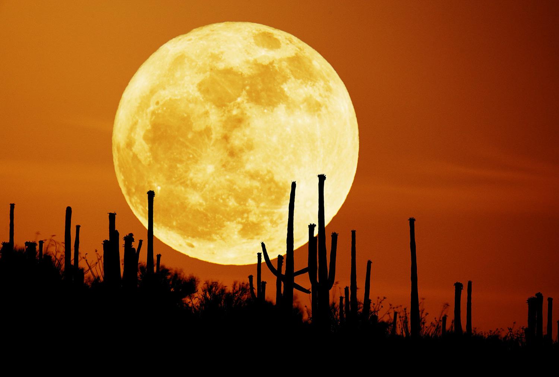 Harvest Moon, luna de finales de septiembre o principios de octubre