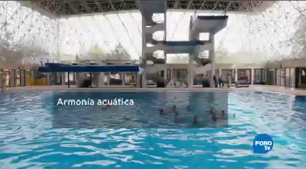 Equipo Nado Sincronizado Ipn Nadadoras