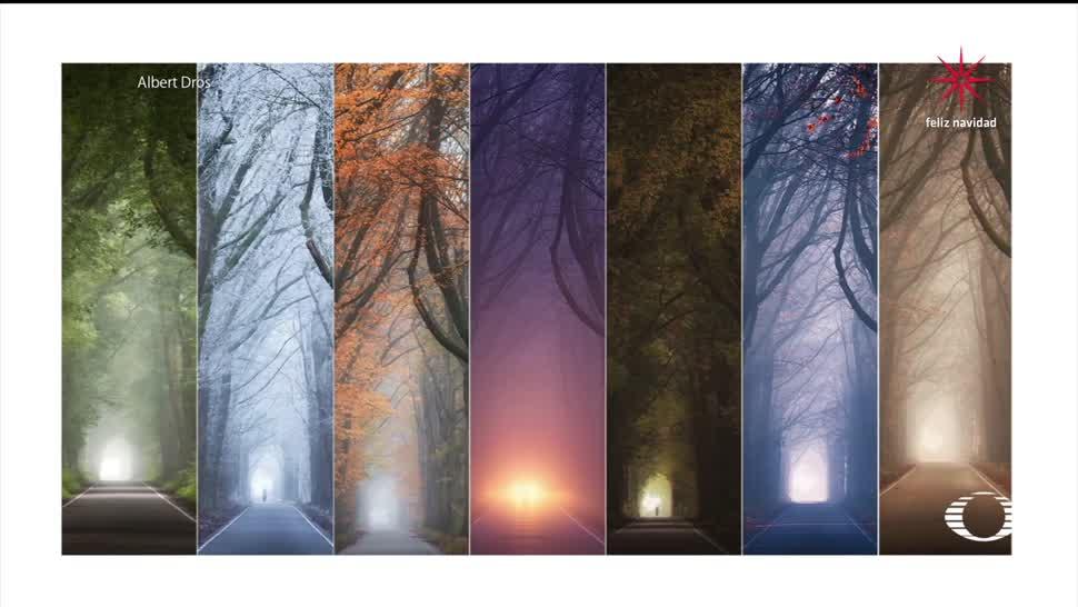 Imágenes de un mismo lugar a lo largo del año