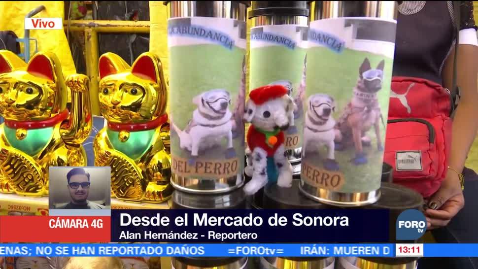 Amuletos de la perrita rescatista 'Frida' se agotan en Sonora