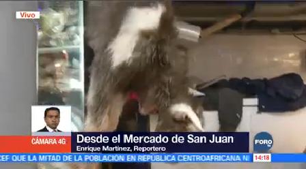 Mercado San Juan Ofrece Opciones Cena Navidad