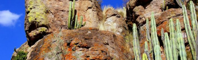 sierra norte guanajuato esconde mas tres mil pinturas rupestres