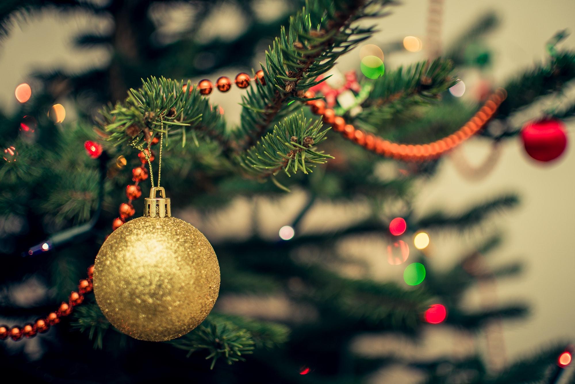 árbol-de-navidad-douglas-adorno-navideño-comun-que-segun-estudio-hace-feliz-a-la-gente