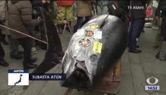 Venden atún gigante en más de 320 mil dólares en Tokio