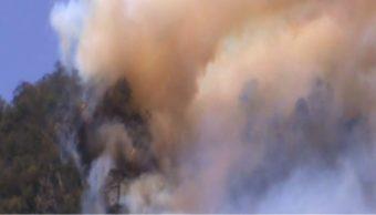Aumentan incendios de pastizales en Veracruz