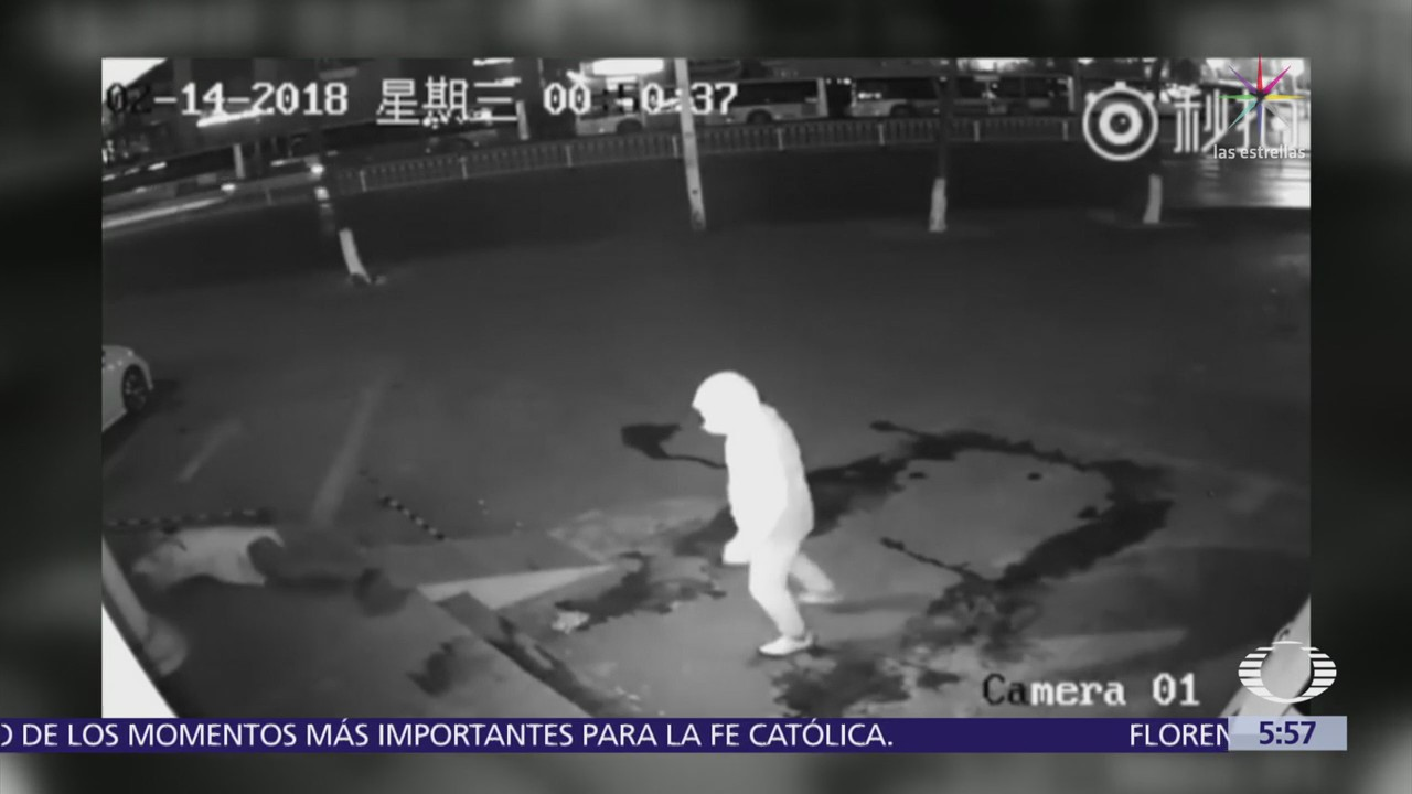 Ladrón noquea a cómplice durante intento de robo a tienda en China