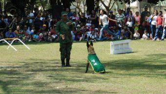 Civiles disfrutan de exposiciones y música en campos militares Sedena
