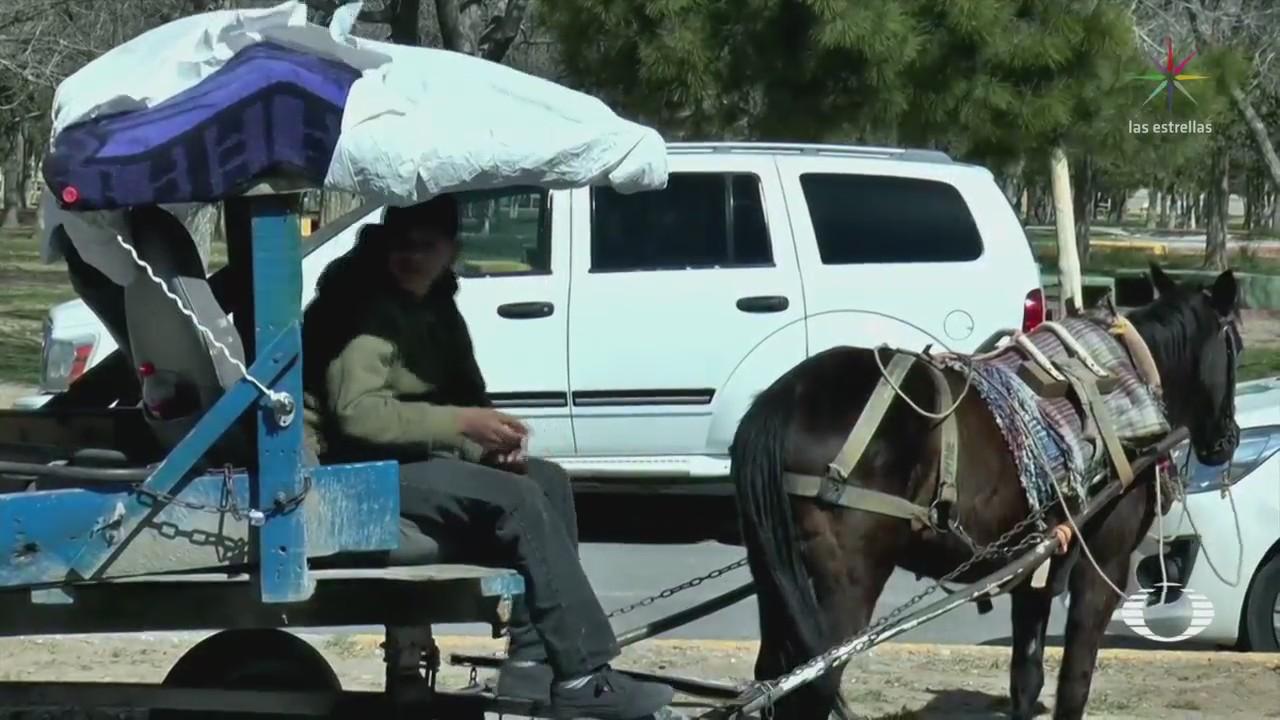 Cambian caballos y mulas por motos para recolectar fierro viejo