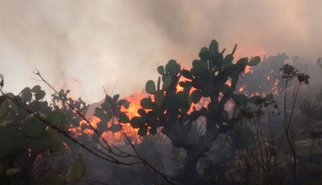 incendio forestal consume alrededor 140 hectareas pastizales slp