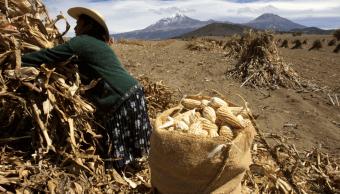La lenta incorporación de la mujer en las decisiones del campo