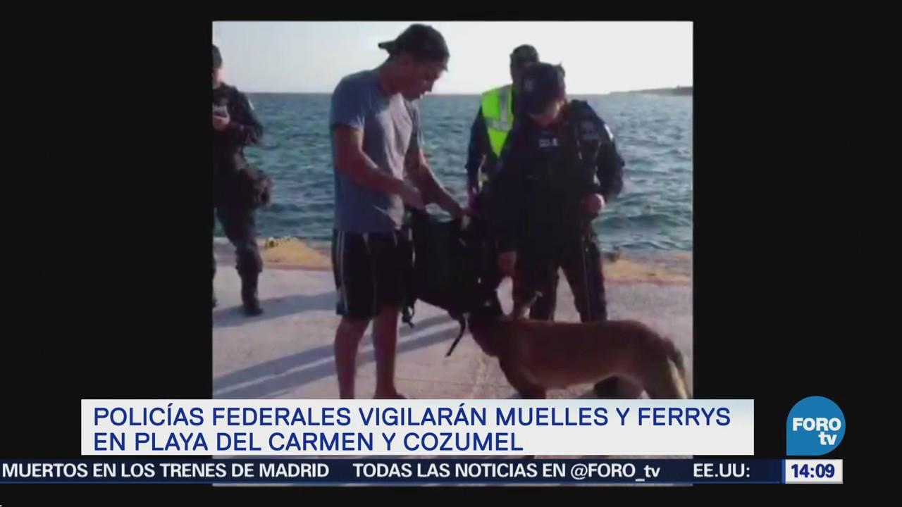 Policías Federales Vigilarán Ferrys Playa Carmen Cozumel