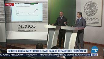 Sector agroalimentario ha crecido en los últimos 50 años: Eduardo Sánchez