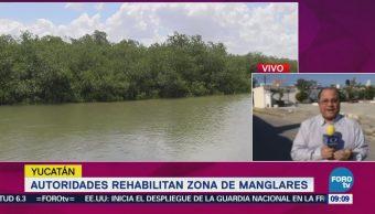 Autoridades Rehabilitan Zona Manglares Yucatán