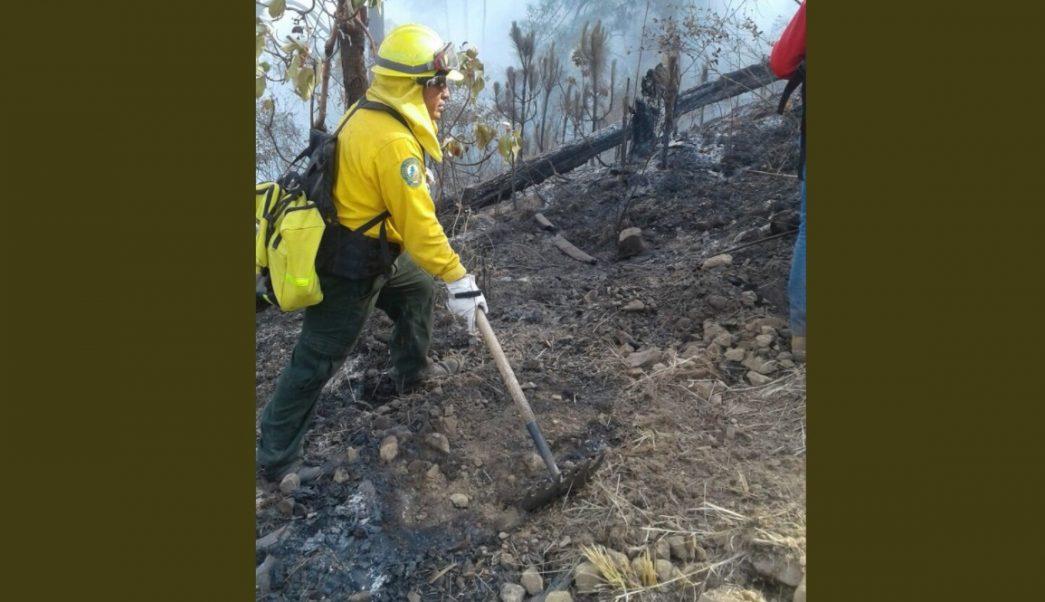 Controlan incendio forestal en reserva de Monte Alto, Valle de Bravo