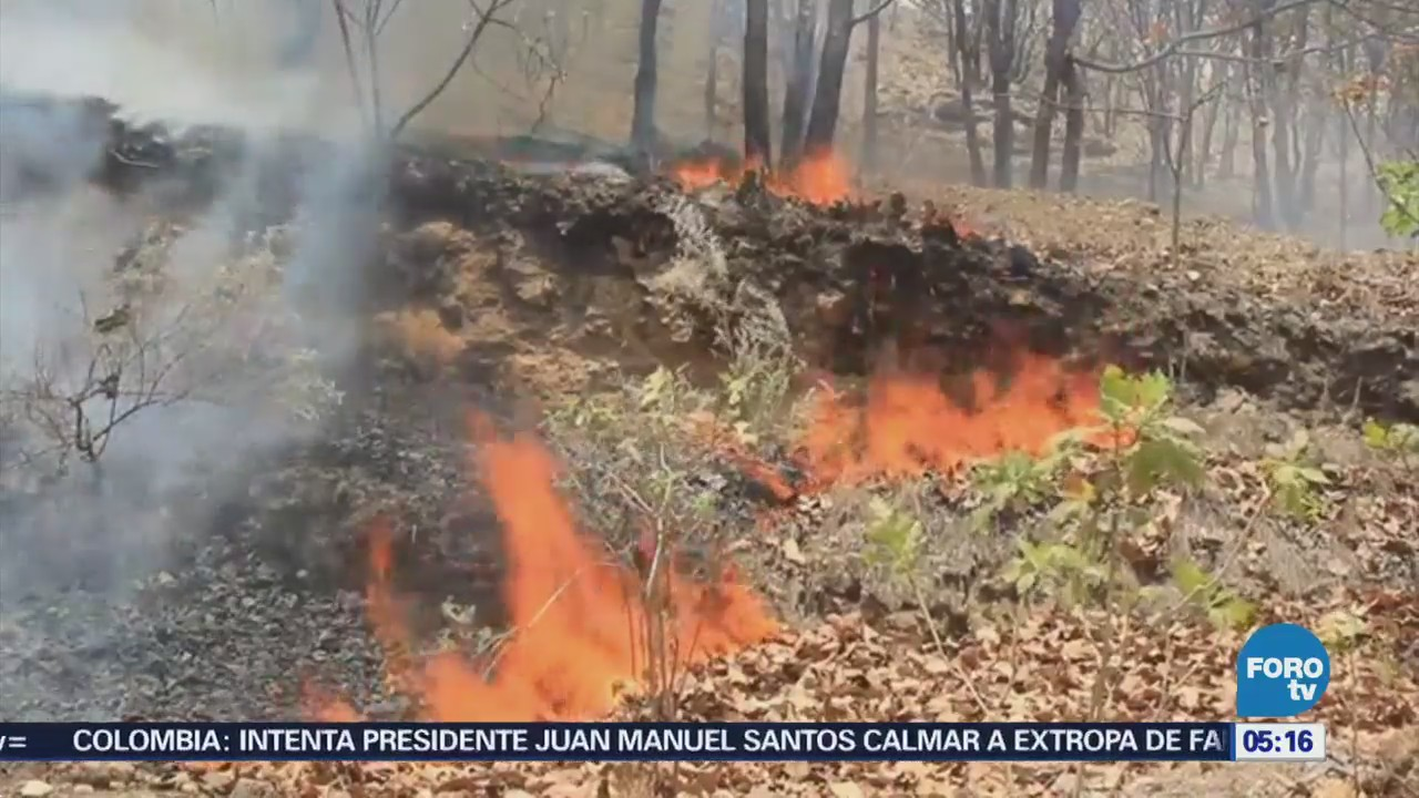 Incendio en Bosque de la Primavera, en Jalisco, provoca suspensión de clases