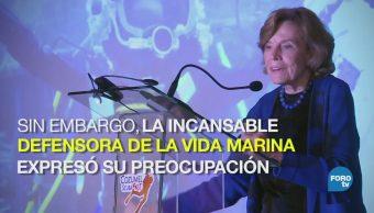Sylvia Earle defensora incansable de la vida marina