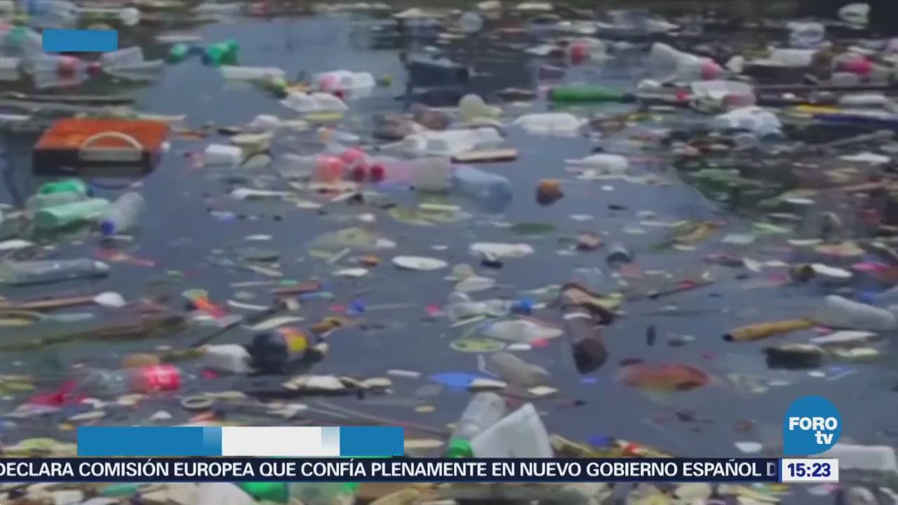 Cambio Hábitos Contrarrestar Contaminación México