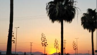 Continúan la ola de calor en Coahuila superan los 43 grados