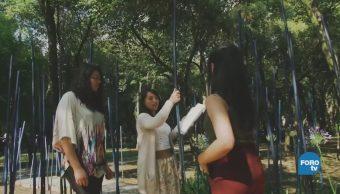 Concurso Flores Jardines Cdmx Bosque Chapultepec