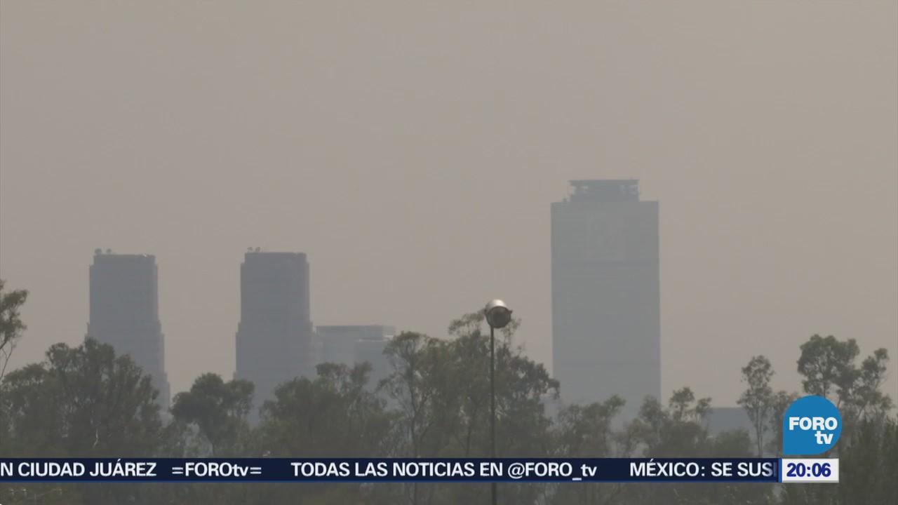 Contingencia Ambiental Cdmx Ozono Hoy No Circula