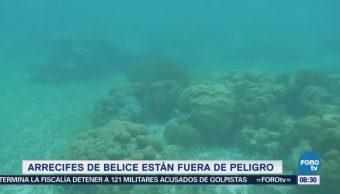 Extra Extra: Arrecifes de Belice están fuera de peligro