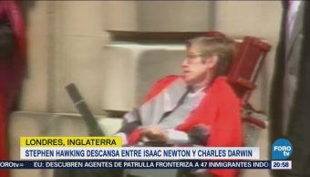 Hawking Descansa Isaac Newton Charles Darwin