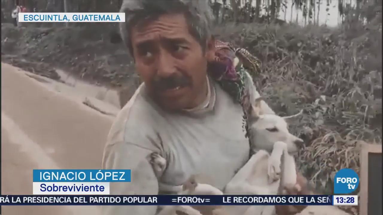 Rescatan Mascotas Zonas Afectadas Volcán De Fuego