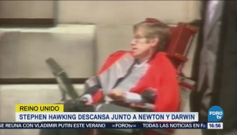 Stephen Hawking Descansa Junto Newton Darwin