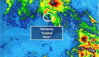 Tormenta tropical 'Bud' toca tierra en Los Cabos, BCS