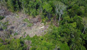 Descubren tribu indígena aislada en el Amazonas de Brasil