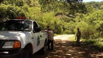 Muertos por ola de calor hoy en el estado de Sinaloa