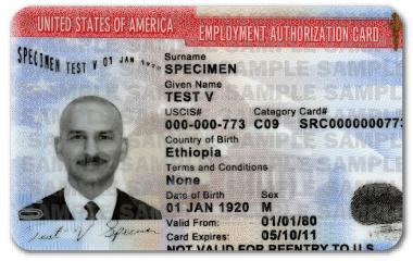 autorizacion-empleo-documentos-cargar-cuando-eres-indocumentado-usa