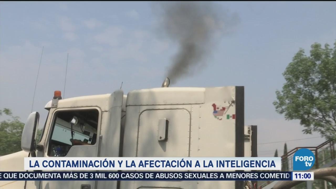 La contaminación afecta a la inteligencia